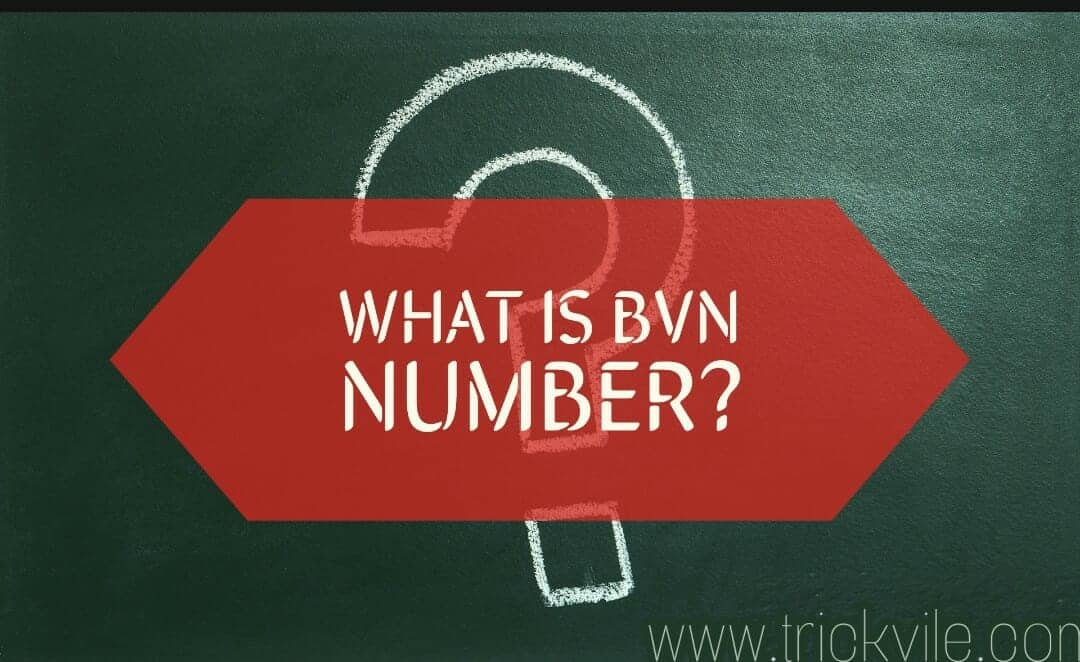 What is BVN Number